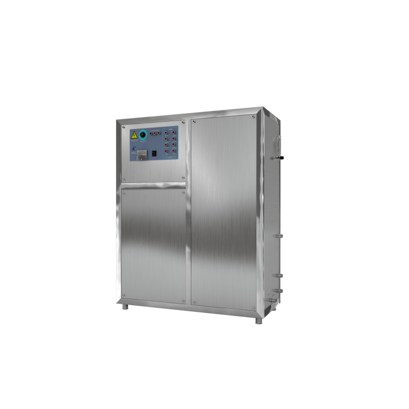 Generador de ozono 100G