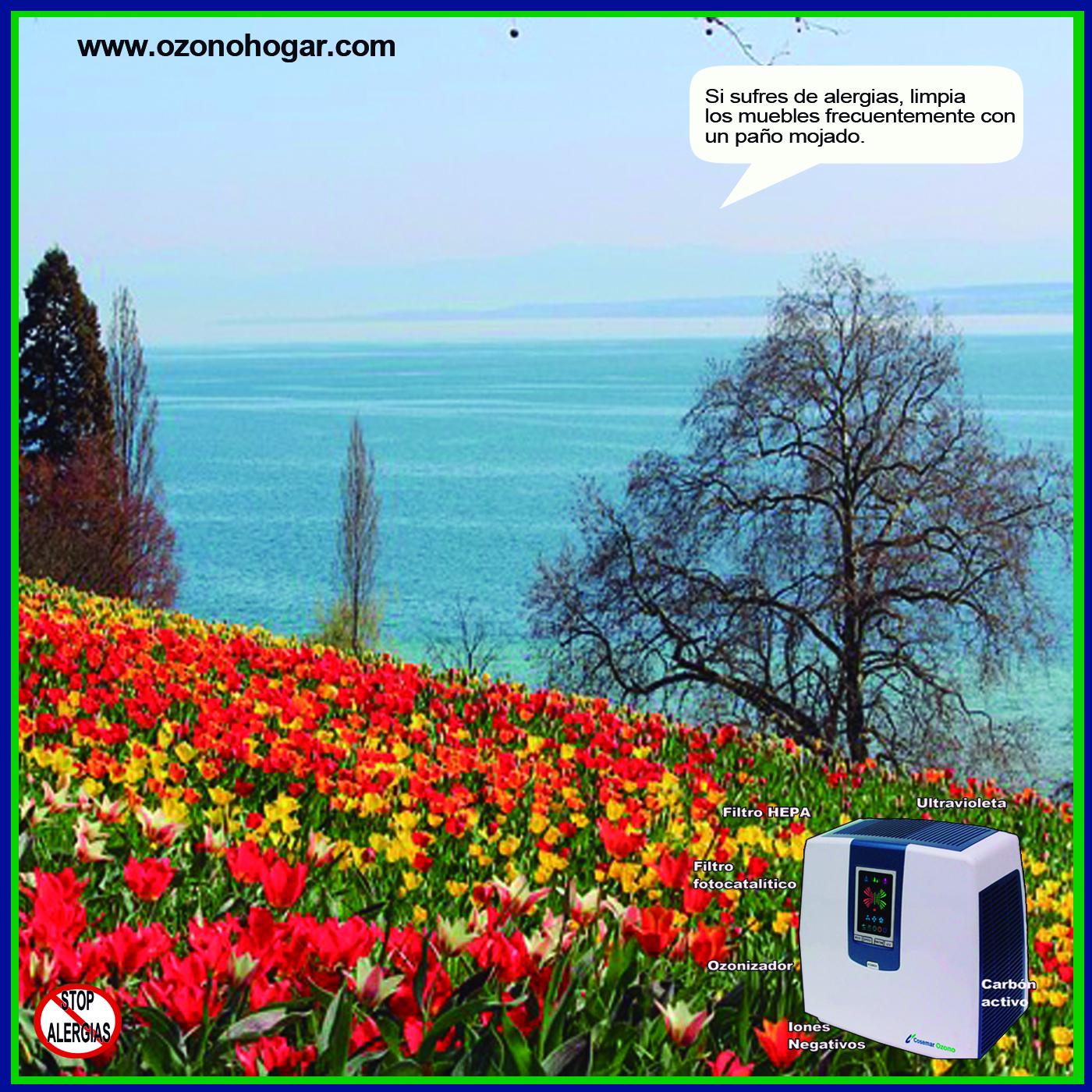 Elegir un purificador de aire: guía de compra