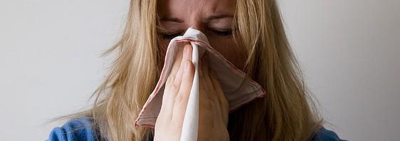 Los purificadores de aire y sus beneficios en el otoño